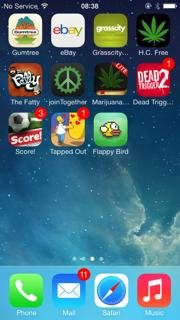 Iphone-5-Sprint-Rare-Flappy-Birds-0