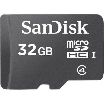 SanDisk-32GB-Class-4-microSD-Card-0