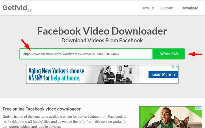 captura de pantalla del sitio web de Getfvid que muestra el cuadro verde donde pegas la URL del video de Facebook y el botón Descargar.