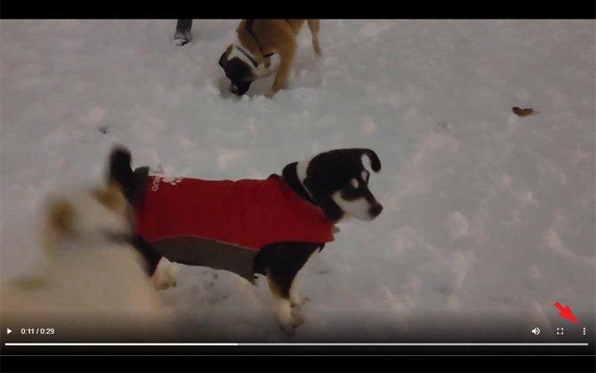 Captura de pantalla de video con menú de triple punto señalado.