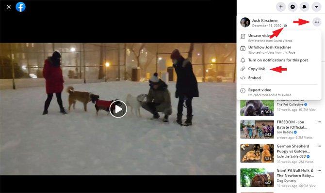 Captura de pantalla de la publicación de video de Facebook que muestra el globo terráqueo que indica que el video es público, los puntos triples para el menú en la esquina superior derecha y la opción de menú Copiar enlace.